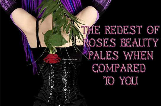the redest of roses beauty pales when compared to you