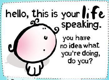 hello this is your life speaking you have no idea what you're doing do you?