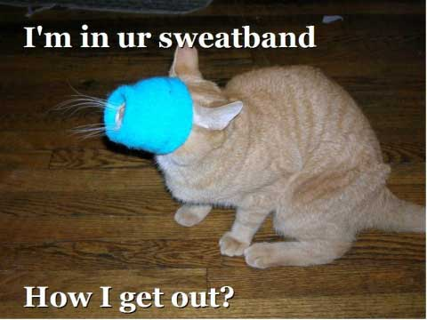 i'm in your sweatband how do i get out?