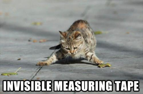 invisible measuring tape