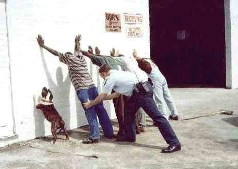 dog being searched