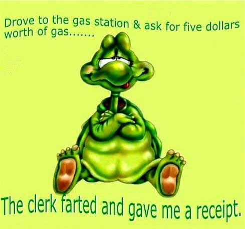 turtle spends 5 dollars in gas and gets a fart