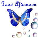 Good afternoon butterfly