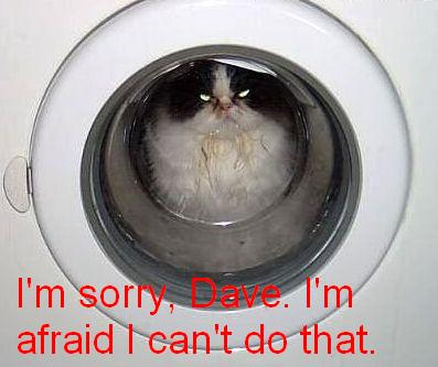 i'm sorry dave i'm afraid i can't do that