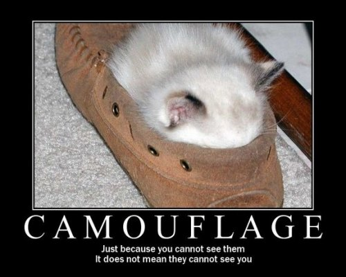 camoflage just because you cannot see them does not mean they cannot see you