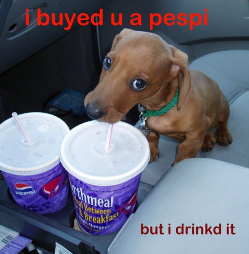 i bought you a pepsi but i drank it