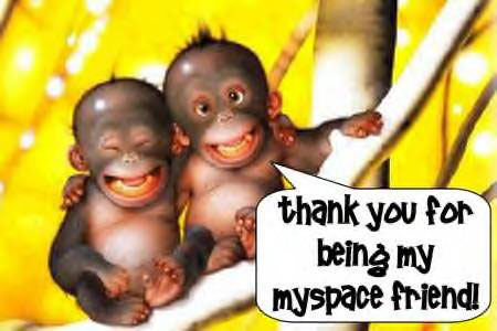 thank you for being my myspace friend baby monkies