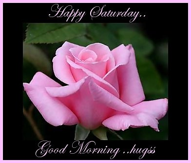 happy saturday good morning hugs