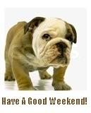 dog - have a good weekend