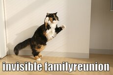 invisible family reunion