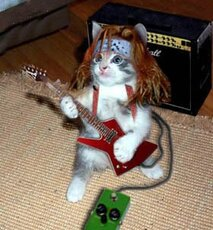 rocker cat with guitar