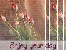 enjoy your day flowers
