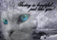 today is beautiful just like you